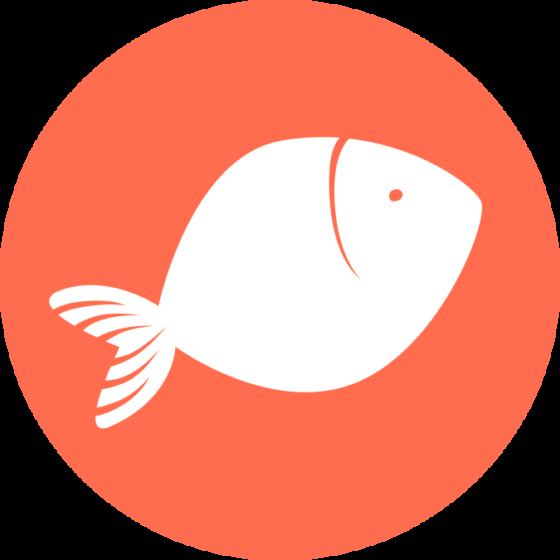 Taille portions viandes poissons œufs